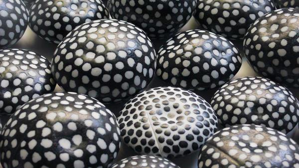 Còdols (Pebbles)